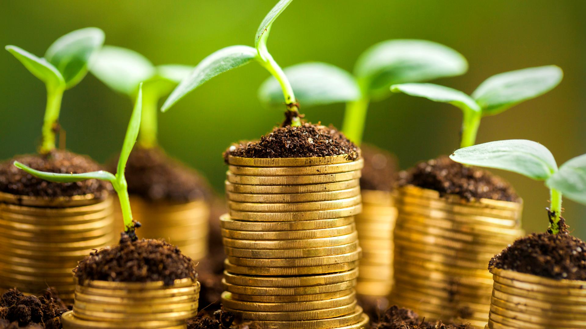 Gewinn erhöhen mit der richtigen Preisstrategie
